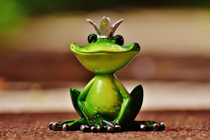 frog-1591896_960_720